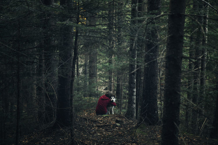 Rear view of woman embracing dog while sitting in forest