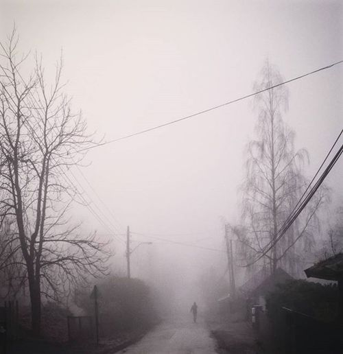 Tåkete i dag Take Grått Fog Foggy Shades Skådalen Trees Horizon Horisont Gåvember Utno Oslobilder Ilovenorway Visitnorway Gråvær Tv2været Yrbilder Holmenkollen
