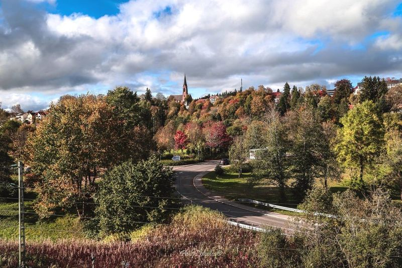 Taking Photos Landscape_Collection Autumn Landscape