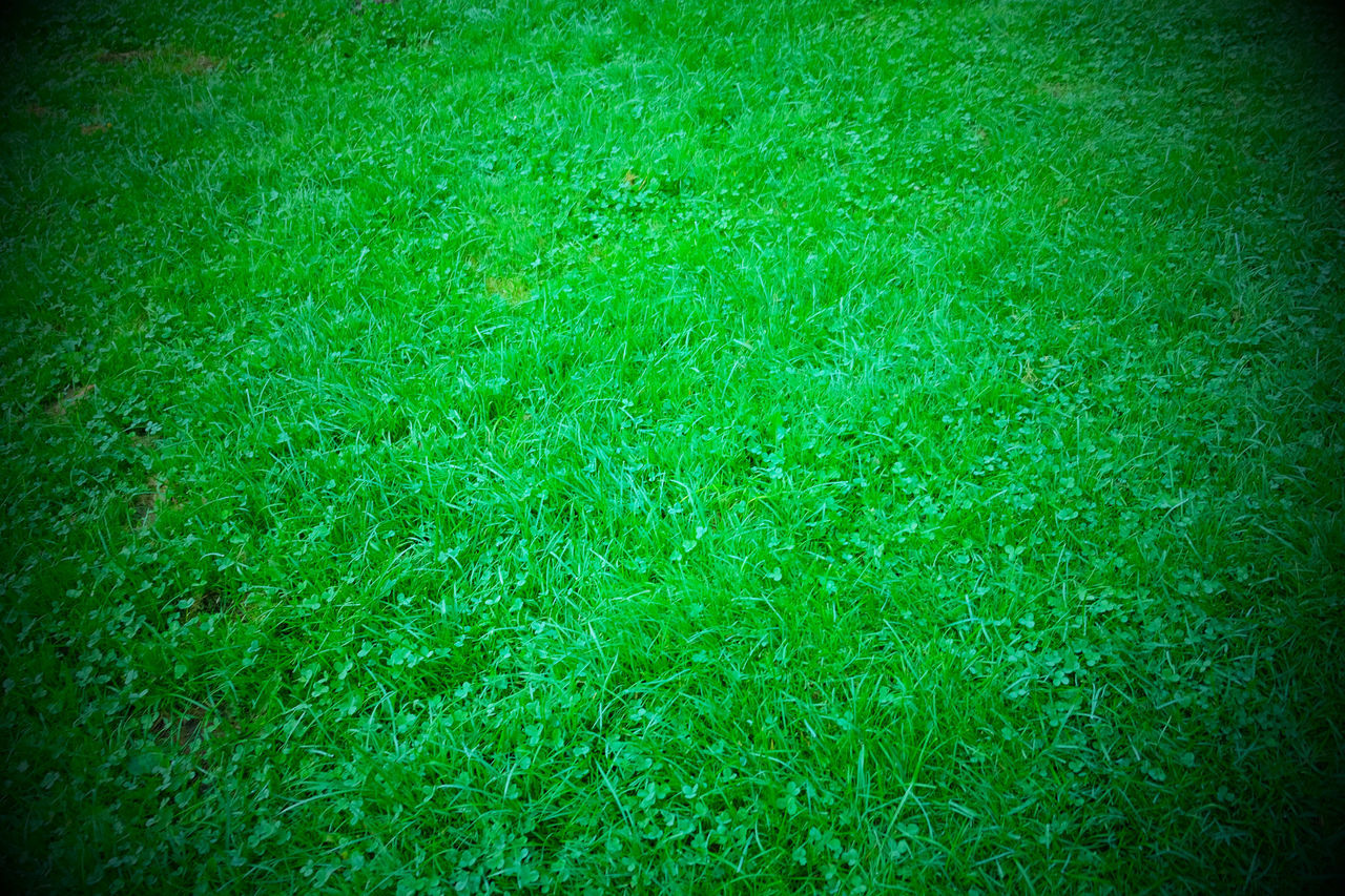 green color, grass, full frame, backgrounds, plant, vignette, lawn, nature, no people, sport, land, textured, day, field, outdoors, playing field, vitality, golf, foliage, plain, clean
