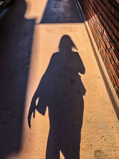 Shadow of businesswoman walking with purse and hair blowing in wind. Waysofseeing Alone Chicago City Life Commuter Downtown Lady Lonely Shadows & Lights Sidewalk Walking Around Woman Businesswoman Day Focus On Shadow One Person Outdoors Pedestrian People Purse Real People Shadow Skirt Standing Sunlight Windy Stories From The City