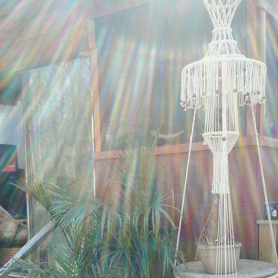 Freelance Lifethe sun rays coming through