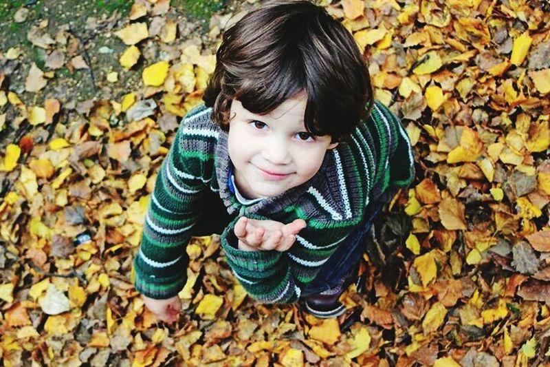 Galicia, Spain España Paisaje Canon550D Beutiful  Otoño 🍁 Outono ☆☆ Hojassecas Oh Que Guapo ;P