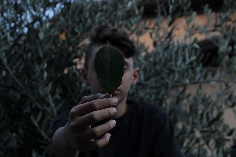 Teenage boy holding leaf against face