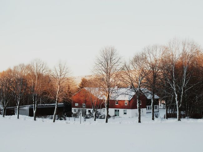 Snow day Harz Mountains, Germany Clausthal Zelllerfeld Snow Nature Outdoors Winter Snowing Cold Temperature First Eyeem Photo Nature Photography Landscape Winterscapes Winterwonderland Winter Sky Winter Trees Harzmountains Harz Im Winter