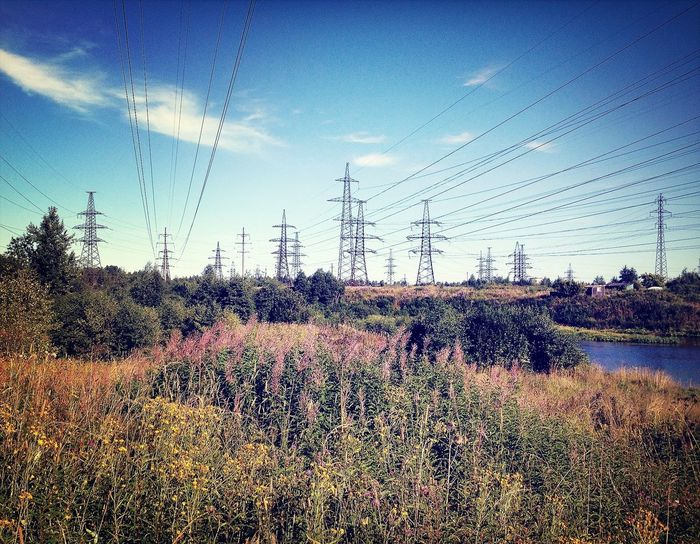 Power Lines EyeEm Nature Lover Nature