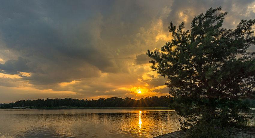Lake Sunset Sky Clouds Sun Sun Beams Water Tree Dramatic Sky Outdoors Cosy