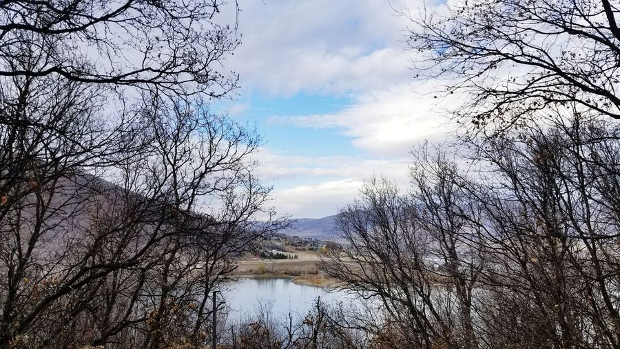 Cloud - Sky Sky Tree Reflection Nature No People Outdoors Day Branch Water Pineview Dam Utah Beauty In Nature Bare Trees Fall Days