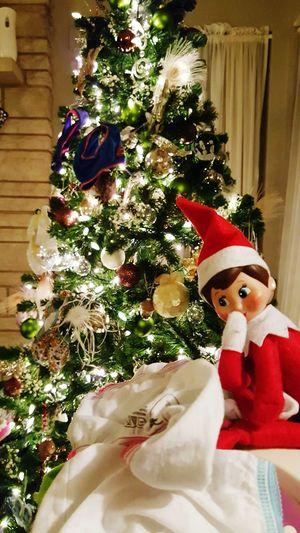 Elfontheshelf Mischievous Christmastime Christmastree Lights Underware Naughtyelf