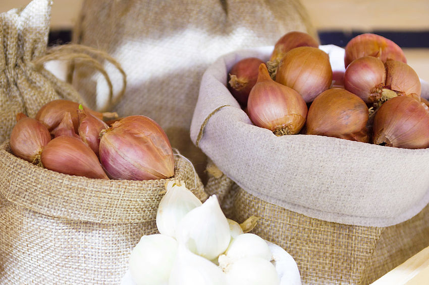 Red Onion In Fabric Bag, Bulb Onion Is Good For Health. Natural Vegetarian Basket Close-up Food Food And Drink Freshness Garlic Garlic Bulb Grunge Healthy Healthy Eating Ingredient Nutritious Onion Organic Ripe Sack Sackcloth Still Life Woven