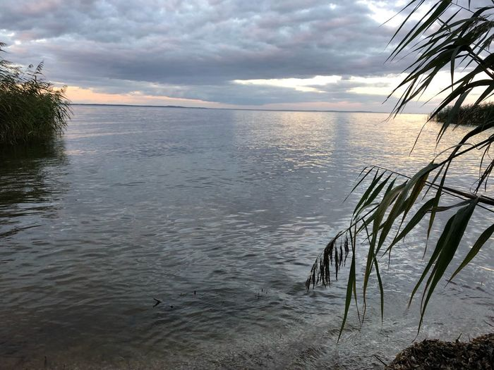 Water Sky Beauty In Nature Tranquility Sea Cloud - Sky Tranquil Scene Scenics - Nature Horizon Beach Horizon Over Water Nature Sunset Tree Land No People Idyllic Plant Reflection Outdoors