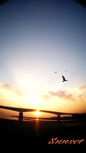 Sunset SpringMiyazaki Kushima 夕凪 Yuka  Relaxing Healing Sorrow Enjoying Life Fresh Air