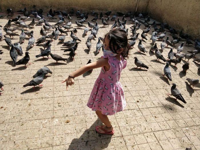 Full length of woman on birds
