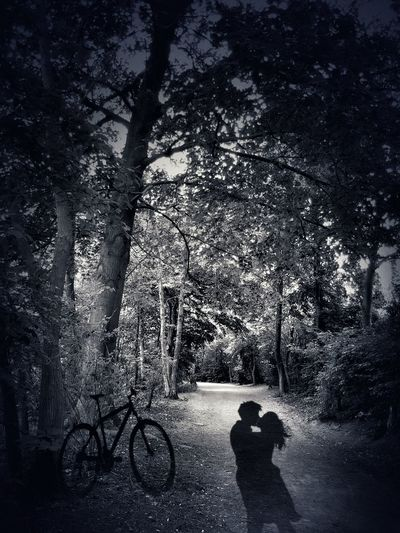 Let me tell you a little story.... 😉Live For The Story Summerlove Forbidden Love Bicycle Real People Tree Two People Silhouette Shadow Outdoors Sky People Nature Photography The Great Outdoors - 2017 EyeEm Awards EyeEmNewHere The Photojournalist - 2017 EyeEm Awards Place Of Heart Story Storytelling Blackandwhite Blackandwhite Photography EyeEm Best Edits The Portraitist - 2017 EyeEm Awards No Color Love The Street Photographer - 2017 EyeEm Awards Let's Go. Together. Sommergefühle Mix Yourself A Good Time Connected By Travel Lost In The Landscape Perspectives On Nature Black And White Friday Love Yourself Visual Creativity