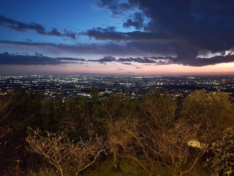 Sunset Sea Tree Water Sky Close-up Cloud - Sky Landscape Scenics Tranquility Calm Atmospheric Mood