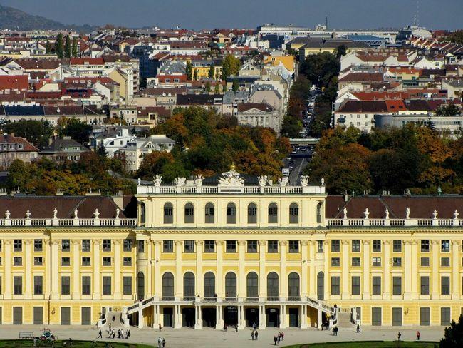 Vienna Seeing The Sights