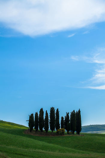 Val D'Orcia, Tuscany, Italy. Travelling through the countryside. Beauty In Nature Countryside Field Hills Hillside Italia Italy Landscape Nature Nature_collection No People Non-urban Scene Scenics Tranquil Scene Tranquility Travel Travel Destinations Tree Tuscany