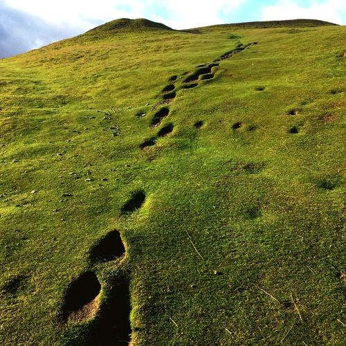 Giants Footprints Castell Dinas Bran Nature Outdoors Beauty In Nature Grass Green Color Mountain Landscape Walk