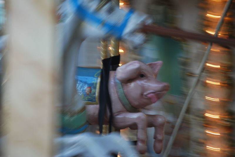 When Pigs Fly! Blur Lyon Merry Go Round Capturing Movement
