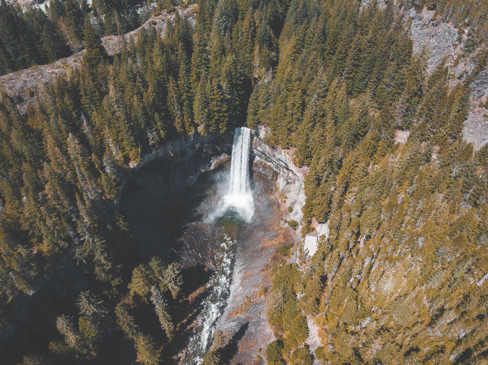Aerial view of waterfall in forest