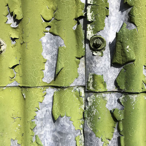 Full Frame Shot Of Peeling Green Paint From Corrugated Iron