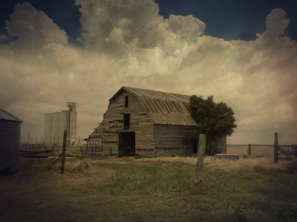 Barn Barns Abandoned Abandoned Buildings Architecture Building Exterior Built Structure Cloud - Sky Clouds And Sky Day Field Grass Landscape No People Outdoors Sky