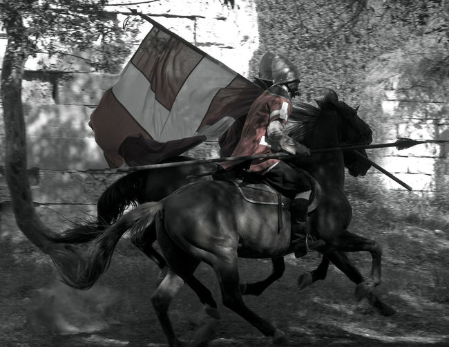 Charging Adult Battle Cavalry Cavalry Soldier Charge Charging Day Domestic Animals Full Length Helmet Horse Horseback Riding Jockey Knight  Lifestyles Mammal Men One Person Outdoors People Real People Riding Spear Spearman Spearmen Tree