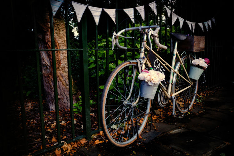 Bicycle Nature Transportation No People Plant Mode Of Transportation Land Vehicle Flowering Plant Flower Abandoned Rusty Wheel Obsolete Day Damaged Stationary Metal Outdoors Boundary Deterioration Bunting