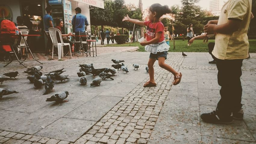 The Magic Mission Magic Magican Daily Life Day Birds Kids Girl Feed  Street Photography Streets People Green Capture The Moment Live For The Story The Street Photographer - 2017 EyeEm Awards