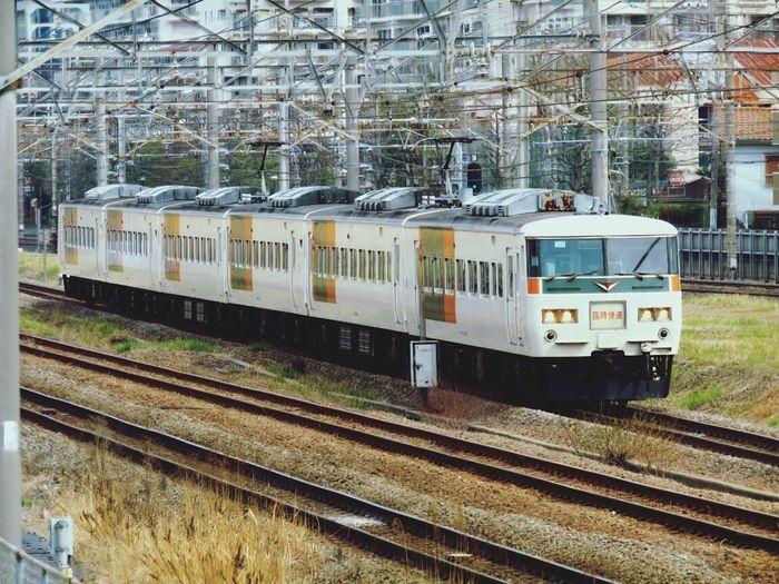 Train.Type-185 Enjoying The Sights