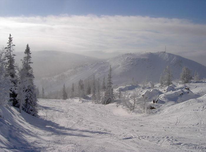 Winter White By CanvasPop Sweden Landscape Enjoying Life