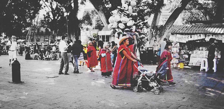 Generaciones Triquis Oaxaca México  Red Red Color TrajeTípico Walking Woman Mujeres Culture Cultura Mexicana Raíces