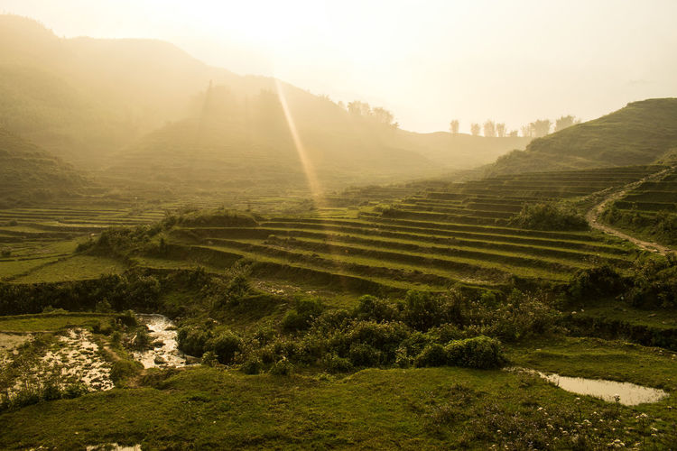 Sapa Vietnam Agriculture Beauty In Nature Day Field Landscape Mountain Nature No People Outdoors Rural Scene Sapa Valley Scenics Sky Terraced Field Tranquil Scene Tranquility