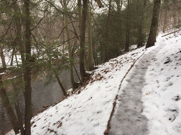 A bit icey on the trails today. Trail Trailrunning Ultra Running Ultrarunning