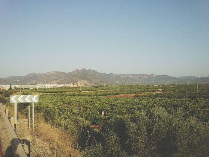 Landscape Horizon La Plana