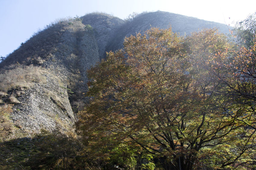 autumn in Maisan Mountain, Jeonbuk, South Korea Autumn Autumn Colors Beauty In Nature Cliff Day Fashion Low Angle View Maisan Mountain Nature No People Outdoors Rock - Object Scenics Sky Tranquility Tree