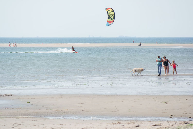 Family time. Beach Sea Land Water Real People Domestic Animals Horizon Day Sky Sport Nature Adventure Mammal Incidental People Domestic Horizon Over Water Leisure Activity Sand Animal Themes Outdoors Kiteboarding Wind Beach Day Family Time Sandy Beach Enjoying Life Beach Holiday