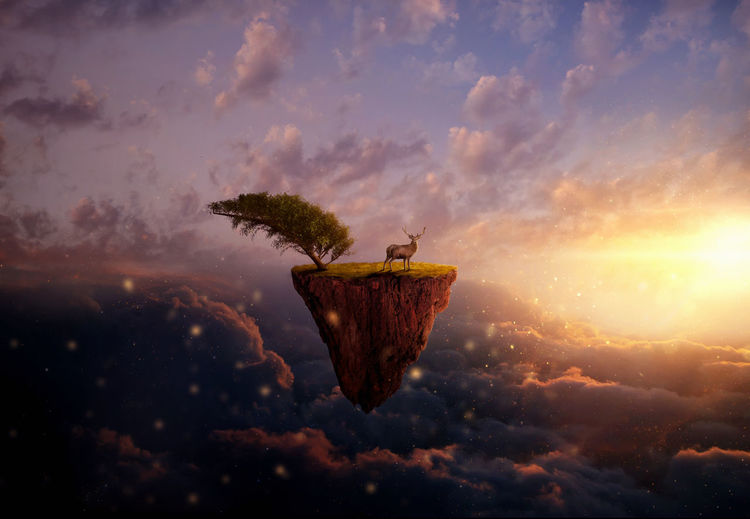 Digital composite image of deer standing on field in cloudy sky during sunset