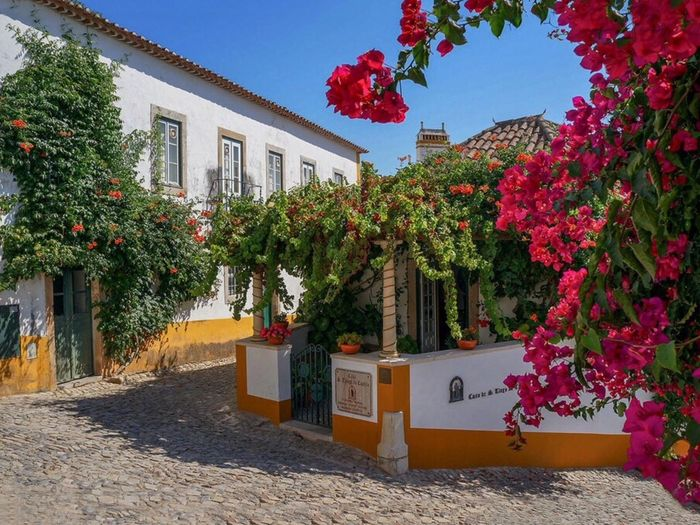 Village Historique Couleurs Naturelles Portugal_lovers EyeEm Best Shots ForTheLoveOfPhotography EyeEm Nature Lover Landscape_photography Monuments Landscape_Collection Landscape_photography Plant Built Structure Architecture Building Exterior Tree Building Nature Growth Sky Flowering Plant Flower No People House Sunlight Day Residential District City Outdoors Decoration Red