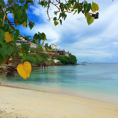 Bestvacations Beach Photo_beaches Photo_colection_ Grenada Islandlivity Island360 Ilivewhereyouvacation Caribbean_beautiful_landscapes Ig_caribbean Ig_today