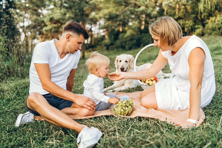 Happy family have fun outdoor Childhood Child Family Togetherness Women Females Positive Emotion Dog Picnic Outdoors Family Values Family Love  Domestic Animals Basket Fruits Food Nature Mother Father Meadow Group Of People Happiness Family Time Having Fun