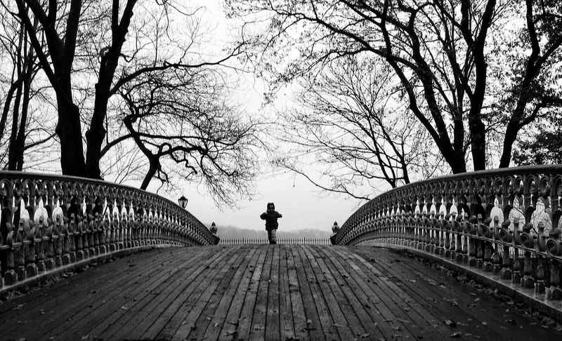 Bare Tree Tree Full Length Walking Bridge - Man Made Structure One Person Real People Outdoors Day Architecture Branch Built Structure Lifestyles Winter Footbridge Nature Sky People Central Park - NYC Central Park Only Children One Boy Black And White Friday
