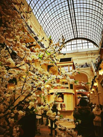 Architecture Built Structure Day Indoors  People City Huawei P9 Leica Flower ГУМ Москва GUM Shopping Center Moscow City