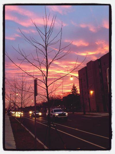Beautiful sunrise this morning