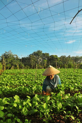 Man standing in farm against clear sky