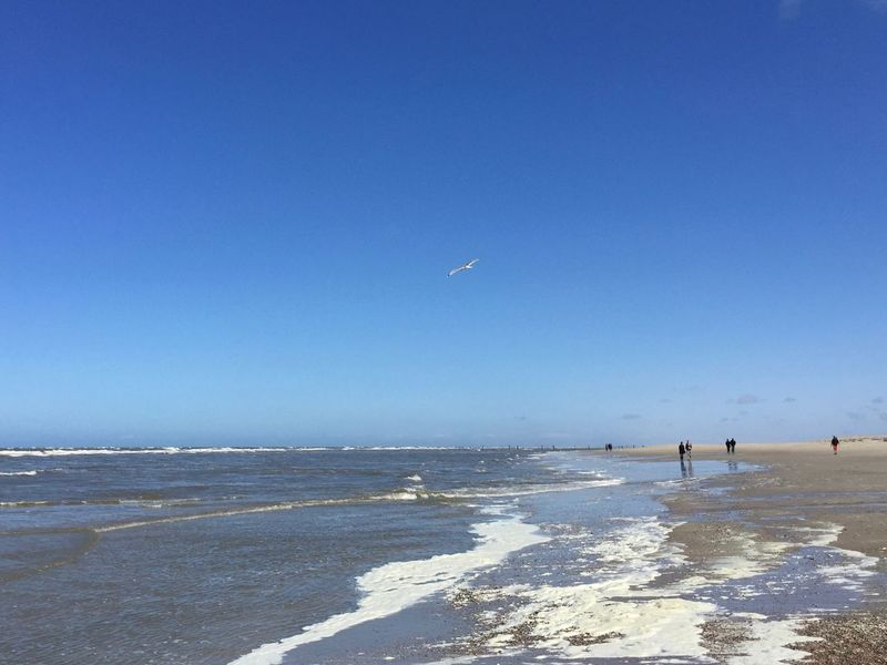At the German coast Holidays Beach Beachphotography Blue Clear Sky Coast Copy Space Flying German Coast Germany Horizon Horizon Over Water Incidental People Norderney Nordsee North Sea Ocean Outdoors Scenics - Nature Sea Sky Water Wave