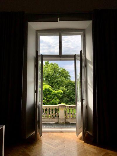 Trees seen through open window of house