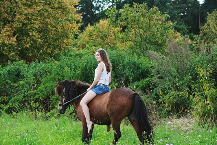 Riding Girl Riding Girl Cowgirl Indian Summer Horseshooting Icelandic Horse Photoshoot Ridingwoman Portrait Of A Woman Shooting Horse Photography  Young Adult Horse Riding