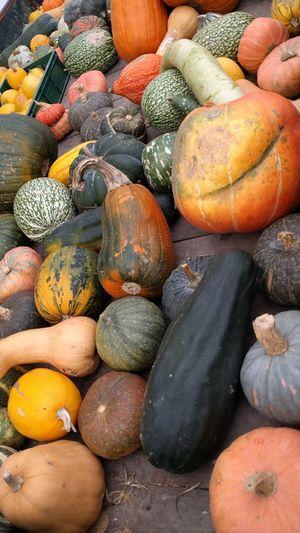 EyeEm Selects Abundance Full Frame Food Market Pumpkin Variation Freshness Healthy Eating Pumpkins Pumpkin Season Halloween_Collection Vegetable Market Vegetables & Fruits Vegetarian Food Vegetarian Vegetables Food And Drink