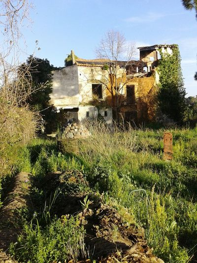 Eeyem_cat Abandoned House Hello World ¡Eyeem Addict! Holidays